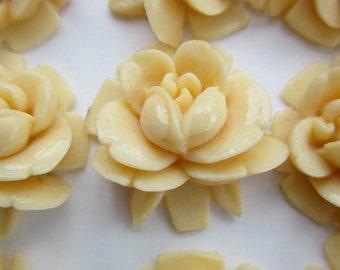 12 Vintage Ivory Carved Lucite Flower Cabochons 16mm