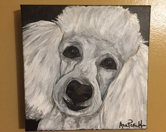 White Toy Poodle Portrait, 8x8 acrylic canvas by Ana Peralta