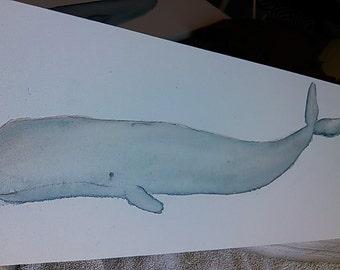 Sperm whale watercolor 8x24