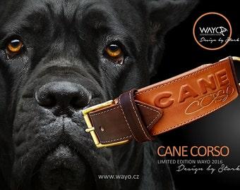 Leather Collar CANE CORSO