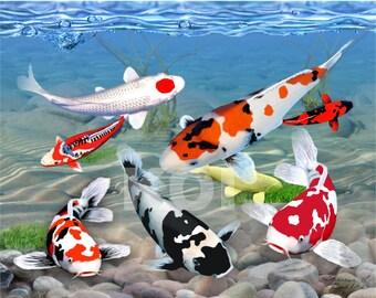 Jewels Of Koi Beneath Koi fish Digital Art Giclee Painting Print
