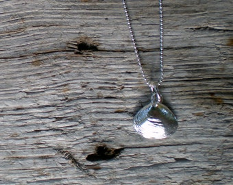 Medium Clamshell Pendant