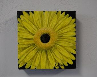 Yellow flower, black background