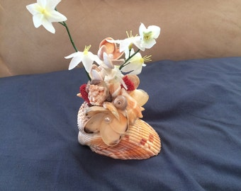 Seashell centerpiece