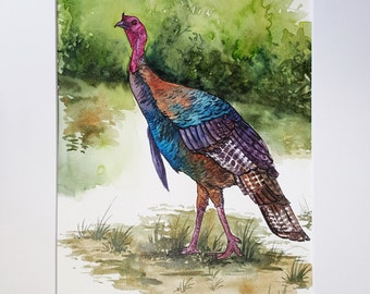 Wild Turkey from North Carolina - Original Watercolor Painting