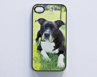 iPhone 4 case cover with dog motif (American Staffordshire Terrier / Pitbull)