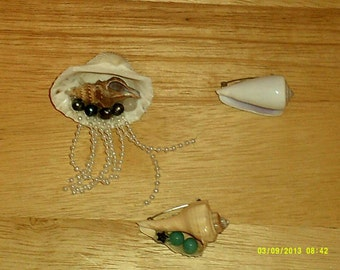 Sea Shell Brooches