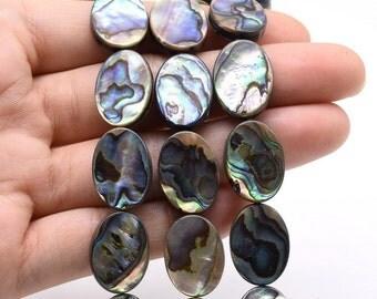 Paua beads, abalone beads, 13x18mm natural flat oval loose shell, rainbow abalone shell strand wholesale, jewelry supply, ABA1050