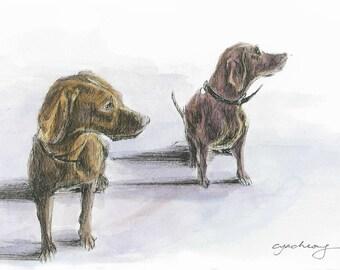 Archie and Stanley: Original Illustration