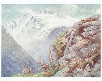 """1910 Alpine Print Saxifrage with the Aiguille du Tour and Glacier des Grands July Painted by G Flemwell Mat and Mount 8"""" by 6"""""""