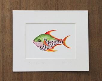 Opah Fish - Print