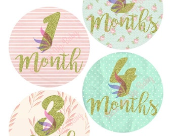 Monthly Baby Stickers - Baby Age Stickers - Baby Girl - Shabby Chic - Baby Photo Prop- Baby Milestone Stickers - Baby Shower Gift