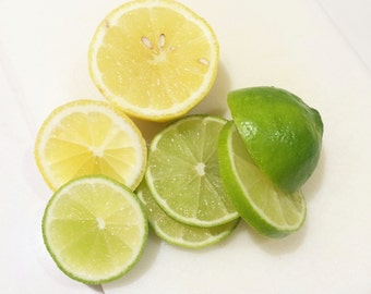 Kitchen Home Office Lemon and Lime Slices Photography Print 5x5 5x7 8x8 8x10 8x12