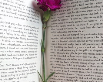 Digital Download of Photograph of Book and Flower