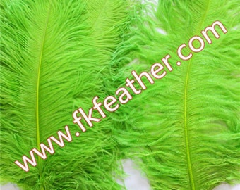 """24"""" - 26"""" Ostrich Feather"""