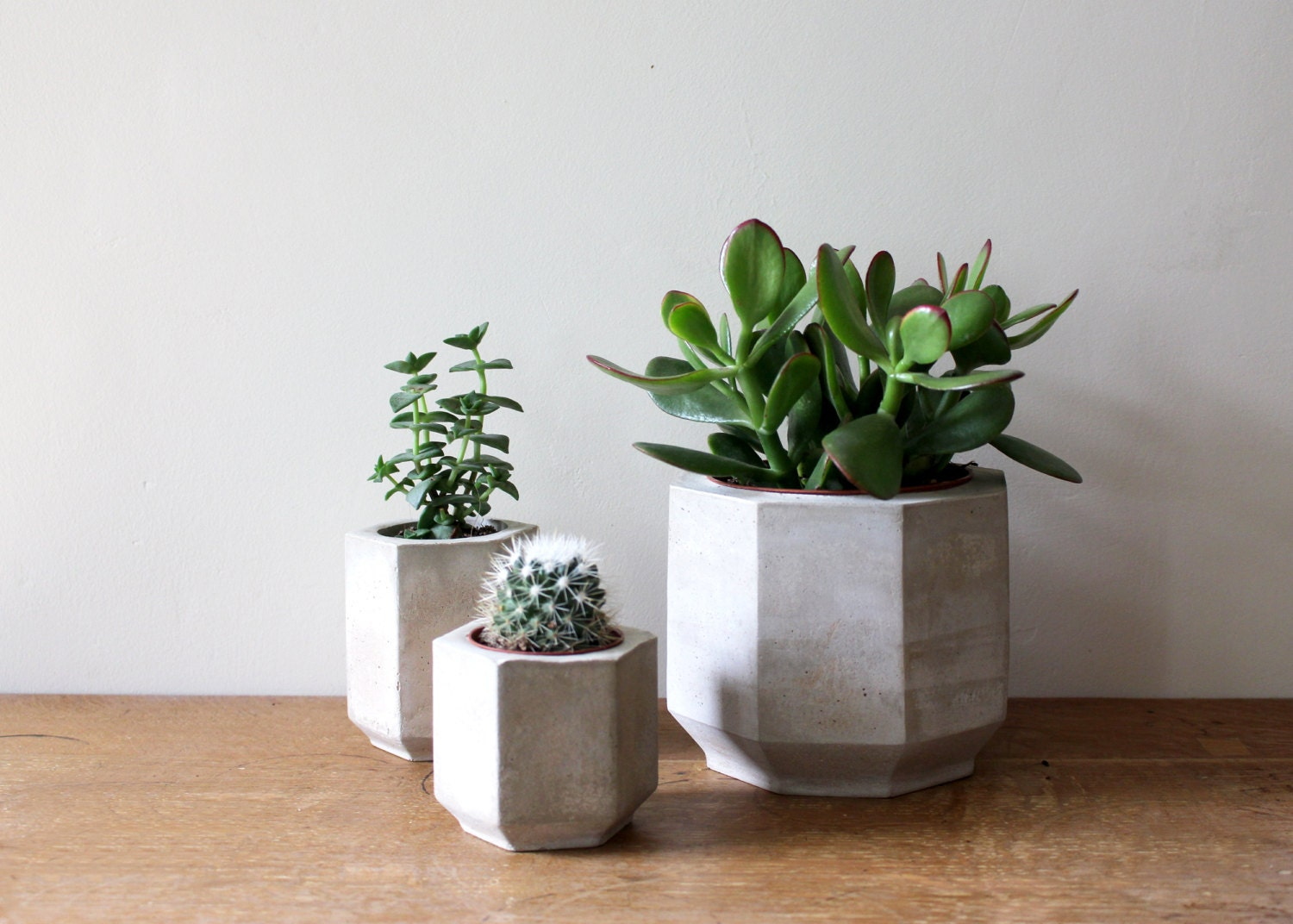 Set Of Three Geometric Concrete Planters Perfect For Cacti And