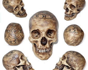 "Skulls on demand ""7.Star"""