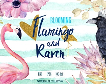 Flamingo, Raven And Protea Pattern