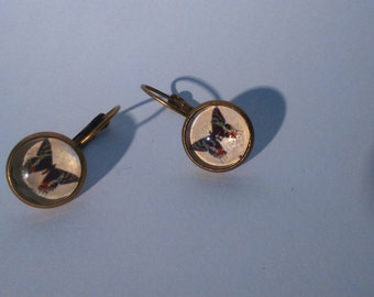 """Butterfly cameo earrings """"Cabinet of curiosities"""""""