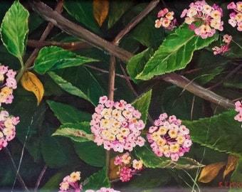 Pink Lantanas - Original Flower Acrylic Painting by Sally Porch