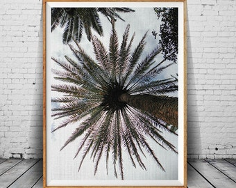 Palm Tree Print, Palm Leaves Print, Palm Tree Photo, Palm Tree Art, Palm Tree Wall Art, Printable Art Home Decor, Summer Art, Summer Print,