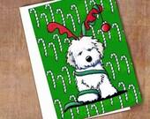 Set of 4 Havanese Dog Reindeer Christmas Cards
