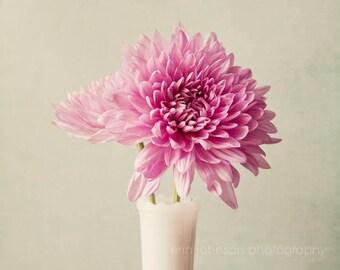 large bedroom art, flower photography, rustic white home decor, bathroom art, pink home decor, still life art, chrysanthemums, pink mums