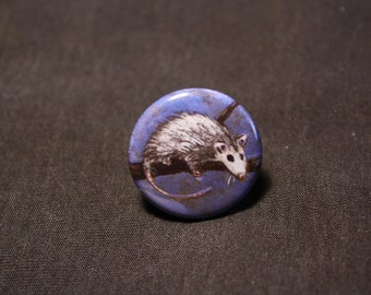 "Opossum 1"" pin from painting in a tree possum"