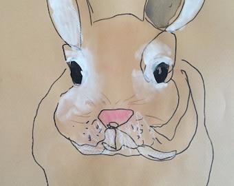 bunny rabbit on paper