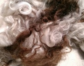 Icelandic lamb wool, brown and white, natural colour, washed, 2oz