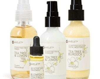 Ayelet Naturals 3-4 Step Organic Skincare Set For Your Skin Type |Facial Care Regimen| Dry Mature Skin Set|Oily Skincare Set/ Gift Set