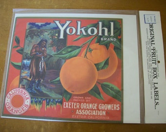 Vintage Prints Fruit Crate Labels NIP Citrus Growers 1900s to 1938 Advertising Art