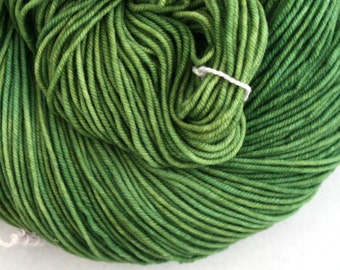Hudson Superwash Merino Hand Painted worsted weight 240 yds Park Bench