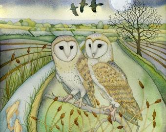 Barn Owls Giclee print.