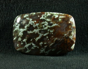 Linda Marie Plume Agate Freeform Cabochon from Oregon 25x36x6mm