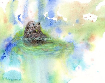 Watercolor Painting, Otter Art, Otter Painting, Otter Watercolor, Otter Art print, Marine Life Art, Sea Life Art Print Titled Otter Bath