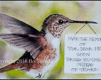 Rufous Hummingbird Sympathy Card 5 x 7
