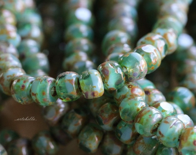 SEASHORE SEEDS .. 50 Picasso Czech Glass Tri-Cut Seed Bead Size 6/0 (5347-st)