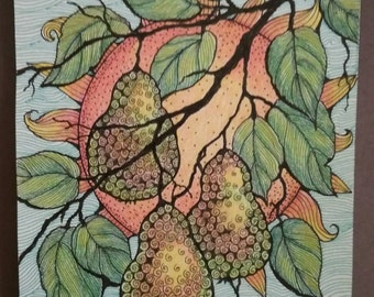 Pen and ink Drawing of pears,fruit,tree,art,color pencil,original, one of a kind.