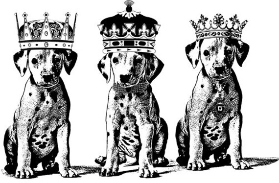 Dalmatian king Puppies dog printable art animal illustration digital stamp Digital download graphics Image black and white kings crown pets