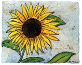 Sunflower- PRINT (matted to 11x14)