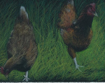 Two Chickens -  Print