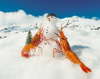 Shrimp Building A Snowman Card by Shrimp Whisperer AK