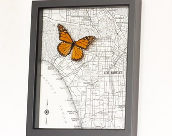 Framed Map of Los Angeles with native butterfly