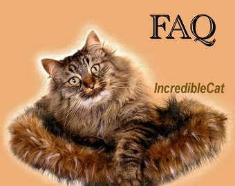FAQ CAT FURNITURE Trees, Q&A Cat Condos, Question and Answers about Cat Tree Furniture, Frequently Asked Questions about Best Cat Trees