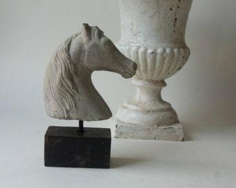 one mini horse head