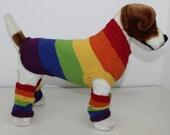 Rainbow Dog Coat and Legwarmers knitting pattern by madmonkeyknits instant digital file pdf download knitting pattern