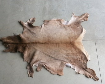 Rocky Mountain Elk Hide-  Soft tanned- Lot No. 0417-H