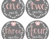 FREE GIFT, Baby Girl Monthly Stickers, Girl Month Sticker,  Milestone Bodysuit Stickers, Gray, Pink, Flower Mod Just Born Newborn Gift