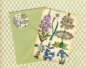 Note Cards, Set of 4, Botanicals, Flower Note cards, Flower Stickers, Gift